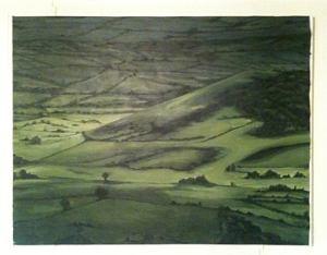 Ngaio-painting